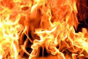 В Астраханской области из-за брошенного окурка сгорело 42 рулона сена